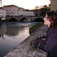 река в Виченции :: Aнатолий Бурденюк