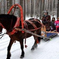 катание на лошадях :: Евгений Фролов