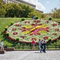 Цветочные часы :: Александр Рябков