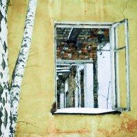 Окно универмага :: Светлана Игнатьева