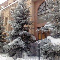 Зима :: Наталья Иванченко