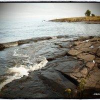берег Ладоги. :: сергей лебедев