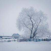 Утро в деревне :: Ришат Муртазин