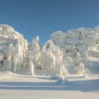 Мороз :: Анатолий