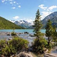 Мультинское среднее озеро :: Виктор Ковчин