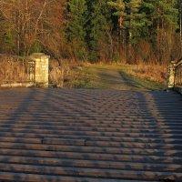 На старом мосту :: sv.kaschuk