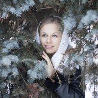 в лесу :: Владимир Штогрин