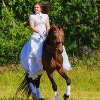 Сбежавшая невеста 2 :: Александр Неустроев