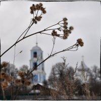 И звон смиряющий всем в душу просится, окрест сзывающий в полях разносится :: Ирина Данилова