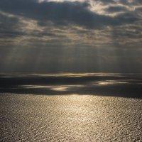Золотистое море :: Sergey Bagach