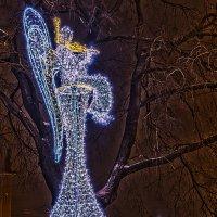 Ангел играет на скрипочке 2 :: Александр Неустроев
