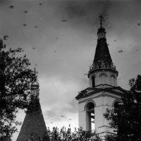 Церковь Рождества Христова. Беседы. :: Николай Кондаков