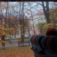 Нечаянный пейзаж с дождём. :: Boris Казёнов