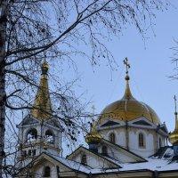Купола Вознесенского кафедрального собора :: galina tihonova