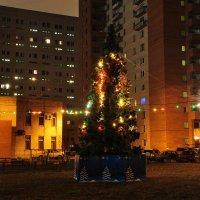 с Рождеством, всех участников галереи!!! :: Владик Дружков