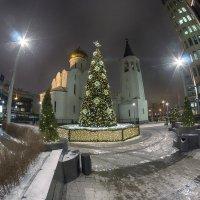 С Новым годом и Рождеством! :: Алексей Соминский