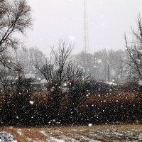 Рождественский снегопад :: Валентин Родоманов