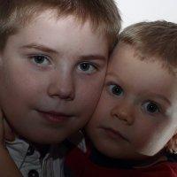 Братья :: serg Fedorov