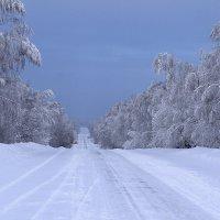 зимняя дорога... :: валерий телепов