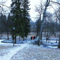 Прогулка по парку. :: Александр Лейкум