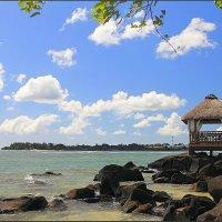 Маврикий, Тартл Бэй :: DimCo ©