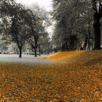 Осень :: Игорь Харьков