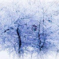 Синий синий иней :: Yana Fizazi