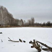 на озере :: Андрей ЕВСЕЕВ