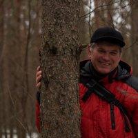 В новогоднем лесу :: Владимир Пименков
