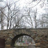 Старинный парк - 3 :: Юрий Гайворонский