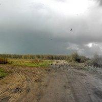 После дождя :: Artem Lazarenko