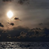 Море :: олег