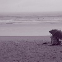 Дождь :: Елена Рогачева