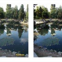 Пруды Воронцовского парка :: Андрей Боженков