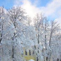 Снег пришёл. :: Михаил Попов