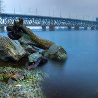 Амурский мост :: Denis Aksenov