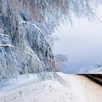 Дороги Пермского края :: Михаил Васильев