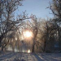 у озера :: Елена Кочетова