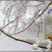 Утро после снегопада :: Olenka