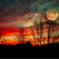Лунная фантазия :: Дмитрий Motorin