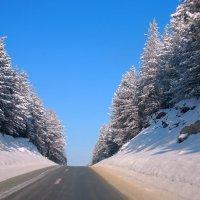 Зимняя дорога :: Александр Коликов