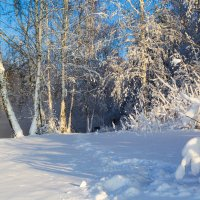 Зимний пейзаж! :: Алексей. Бордовский