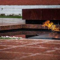 Вечный огонь в Александровском саду :: Эдуард Ульрих