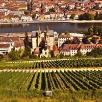 Виноградные склоны Вюрцбурга возле реки Майн (Бавария, Германия).№2 :: Валентина Потулова