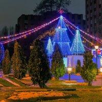 Новогодняя елка :: Юрий Стародубцев