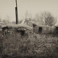 кладбище кукурузников :: Алексей Ершов