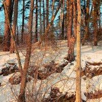 Зимы...зимы ждала природа.... :: Стил Франс
