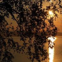 Золотой закат :: Валерий Павлов