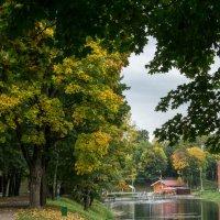Осень :: Олег Козлов