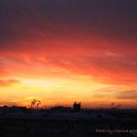 Закат декабрьского солнца. :: Marina Kharitonova